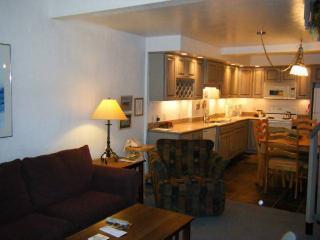 Comfortable Condo with Great Views - Close to the Winter Shuttle & Hiking Trails (1265) - Crested Butte vacation rentals