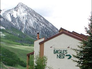 Great Condo for Couples - Amazing Views (1284) - Crested Butte vacation rentals