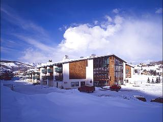Convenient & Inviting Accommodations - Wonderful Resort-Style Amenities (1329) - Crested Butte vacation rentals