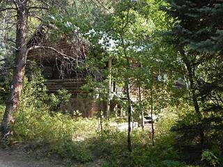 Perfect 1 bedroom Cabin in Allenspark - Allenspark vacation rentals