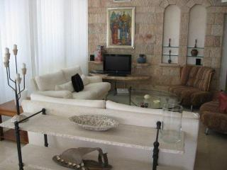 King David Tower panoramic penthouse - Tel Aviv vacation rentals