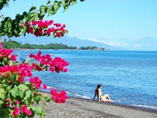 Spectacular Beach Front Villa - North Bali - Lovina vacation rentals