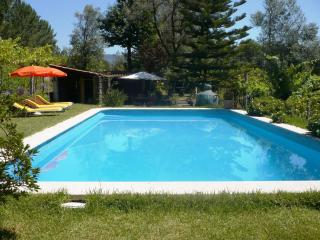 4bdr nice villa w/ tennis court and mini-gymnasium - Barcelos vacation rentals