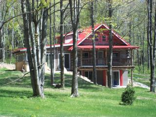 Lovely House with Deck and A/C - Frazeysburg vacation rentals