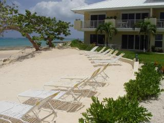 Beachfront Luxury Condo at a Great Price! - Grand Cayman vacation rentals