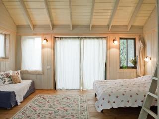 Sabina- A countrySide GetAway  in  AMIKAM - Ramot Menashe vacation rentals