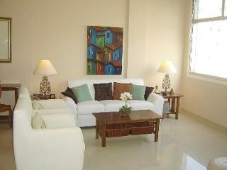Luxury Rental with Waterviews - Copacabana vacation rentals