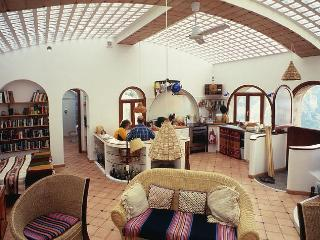 Home for 2 overlooking spectacular Amalfi Coast - Positano vacation rentals