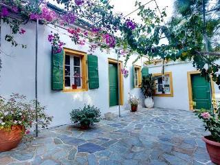 Nicoletta Villa (near Loggos, Paxos) - Paxos vacation rentals