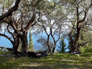 Katina Studio (near Loggos, Paxos) - Loggos vacation rentals