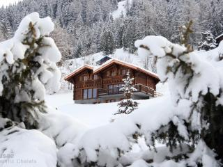 Large Ski-in/out upmarket chalet  Hammam & Jacuzzi - Valais vacation rentals