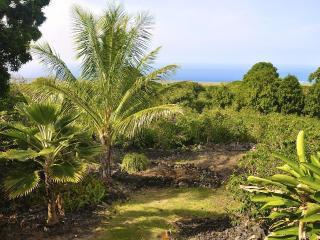 Kope Mahi Vacation Home - Captain Cook vacation rentals