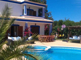 Richard's villa 8pax - Albufeira vacation rentals