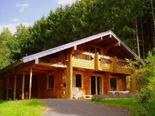 Vacation House in Ulmen - 1615 sqft, quiet, relaxing, secluded (# 3571) - Ulmen vacation rentals