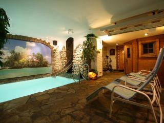 Maisonette, balcony, private use indoor pool+sauna - Ulmen vacation rentals