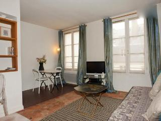 Vacation Rental in Louvre Near Mueseum and Opera House - Paris vacation rentals