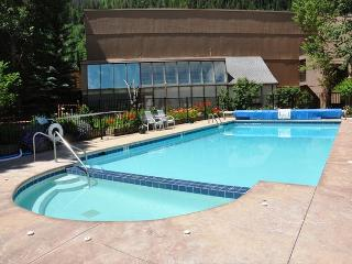 Convenient Condo in East Vail only 3.5 miles from Vail village - Vail vacation rentals