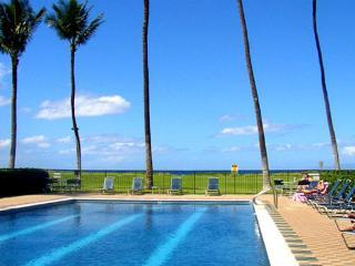 Waiohuli Beach Hale #D-120  Oceanfront Complex. Great Rates! Sleeps 3! - Kihei vacation rentals
