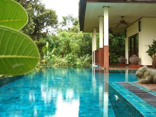 Gecko Villa: rural, full board, private pool villa - Prachaksinlapakhom vacation rentals