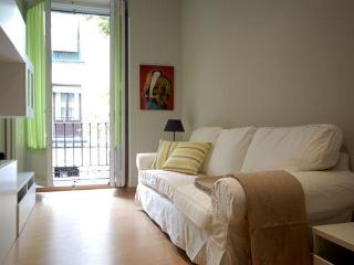 Nice 2 bedroom Madrid Condo with Internet Access - Madrid vacation rentals