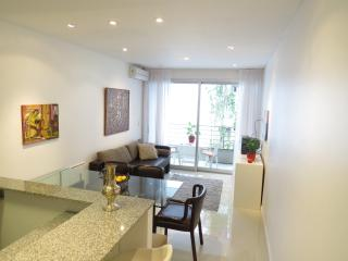 GREAT apart, 4 people, totally new, 2 balcony - Buenos Aires vacation rentals