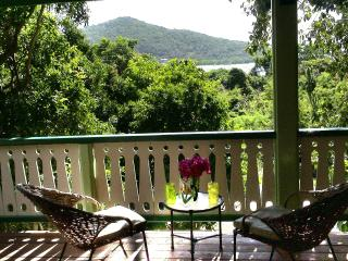 Cactus Flower Cottage- 1 Bedroom Peaceful Retreat - Saint John vacation rentals