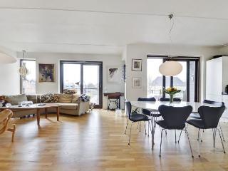 Nice Copenhagen apartment near the Opera - Copenhagen vacation rentals