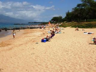 Maui Parkshore #215 - Ocean view, Remodeled 2/2. $135 SUMMER SPECIAL! - Kihei vacation rentals