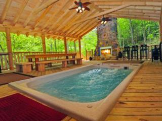 *PARADISE* Swimspa, Tunnels, Wi-Fi, - Gatlinburg vacation rentals