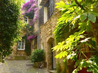 Old Stone House With Terrace By Medieval Castle - Le Plan-du-Var vacation rentals
