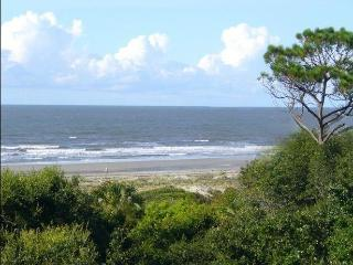 The Treetops at Shipwatch, 2BR, Oceanfront, Clean! - Kiawah Island vacation rentals