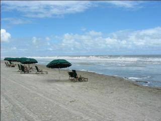 The Escape at Windswept, Oceanfront, 1-BR, 2 Bath! - Kiawah Island vacation rentals