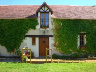 Delightful gîte with private walled terraces - La Roche-Posay vacation rentals