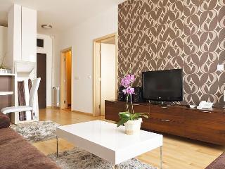 DOWNTOWN Apartment SATIN 1 - with Parking! - Belgrade vacation rentals