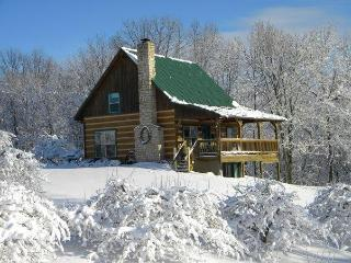 Luxury log cabin located in a working orchard - Philo vacation rentals