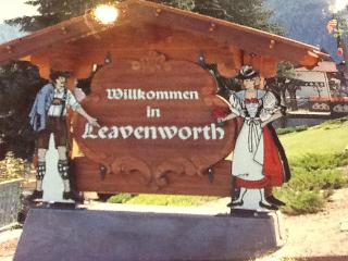 Leavenworth Mountain Lodge ~ 300 days of Sunshine - Leavenworth vacation rentals