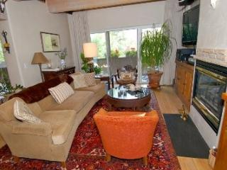 Ketchum 3 BD Home - Walk to Town and on Bike Path - Ketchum vacation rentals