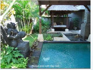Gorgeous, apt with pool, yard, WiFi, private beach - Nusa Dua vacation rentals