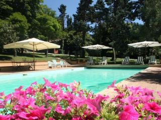 Villa,private pool,3 km from the sea,wi-fi,Pesaro - Pesaro vacation rentals