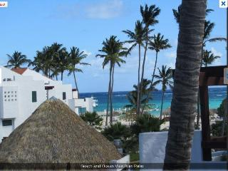 Amazing Luxury BeachFront Sea Views 2BR 2BA Condo! - Bavaro vacation rentals