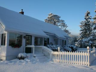 N. Conway, mtn. house, horseback & sleigh rides, - North Conway vacation rentals