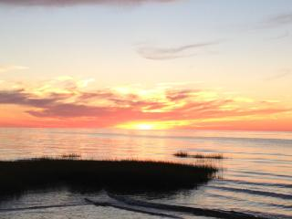 Secluded Beach House only 650 feet to own beach - Orleans vacation rentals