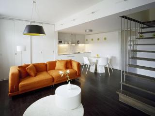 Holečkova Apartments - DeLuxe 1-BR - Prague vacation rentals