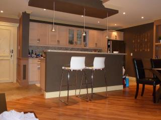 MUST SEE! 3 Bedroom Penthouse downtown Mississauga - Mississauga vacation rentals