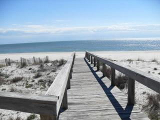 Nice Condo with Deck and Internet Access - Saint George Island vacation rentals