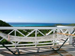 Great Ocean View Blue Yonder 2/2 with Private Pool - Christiansted vacation rentals