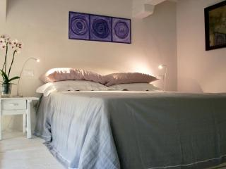 Refined Open Space Apartment in the City Centre - Florence vacation rentals