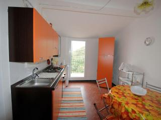 Nice Condo with Stove and Balcony - Manarola vacation rentals