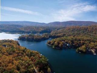 Lakefront home, theater, dock, swim-fish-boat - Waleska vacation rentals