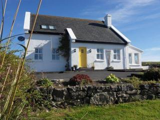 Fuschia Cottage 4 Bedrooms  views over the ocean - Miltown Malbay, County Clare vacation rentals